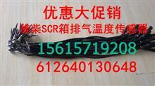 潍柴德龙欧曼华菱大运解放SCR排气温度传感器/612640130648