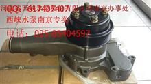 玉柴西峡飞龙 水泵,M3001-1307100C/M3001-1307100C