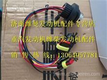 WG1034121181+007重汽国四尿素泵内部线束/WG1034121181+007