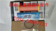 潍柴玉柴天然气发动机低压滤芯 612600190993 专用/612600190993