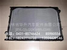 陕汽德龙F3000散热器总成/DZ95259532202