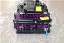 重汽尿素泵 AZ1034121031/AZ1034121031