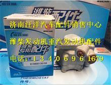 潍柴WP7液压泵610800130194/610800130194
