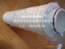 PALL颇尔滤芯,明宇过滤器提供/T94711286010