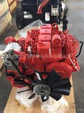 东风康明斯 B125 原厂4BT3.9 125 发动机/B125