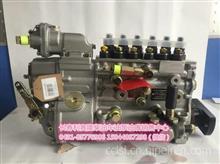 重庆高压油泵/CB6TH952 CB6H983  CB6TH953 CB6P1193