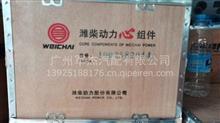 潍柴动力发动机wP10四配套/1002582044