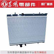 散热器总成1301010DC68001A/1301010DC68001A