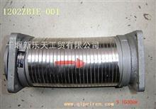 金属软管总成/1202ZB1E-001