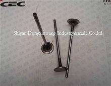 D5010359502 雷諾Dci11系列排氣閥/D5010359502