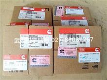 河南洛阳现货供应进口康明斯QSL9活塞环/4089644