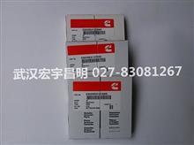 湖南供应纯正进口康明斯B3.3活塞环/C6205312300