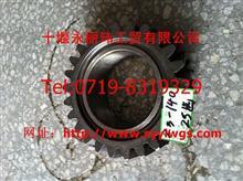 江山 JS6-850变速箱主轴四档齿轮/1700Z3-140