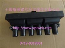 ECU系列产品/点火线圈/东风140-2汽油电喷37V08-05020/37V08-05020