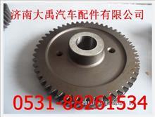 亲人潍柴喷油泵齿轮/AZ1560130064