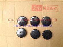 东风天龙地毯卡扣5109901-C0100/5109901-C0100