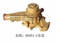 玉柴6M-6120  M3001-C水泵/M3001-1307100C