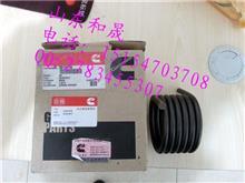 弹簧KTA19-3019416用于柴油发动机风扇水箱组/3019416