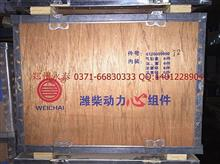 潍柴原厂潍柴动力心组件全系列/61260090072