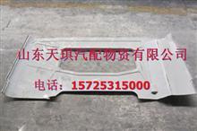 陕汽德龙M3000后围内护板/PW10G /56-02011
