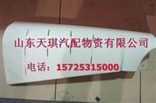 陕汽德龙M3000左右前面板外侧板(内包角) PW21TG7/53-01530/PW21TG7/53-01540