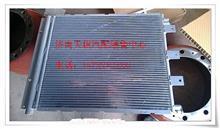 陕汽德龙M3000冷凝器/DZ13241824360