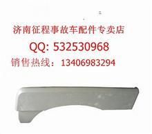 陕汽德龙F3000低位前翼子板/DZ13241230411/0412