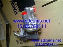 重庆康明斯喷油器4988835 HPCR 喷油器 烟台厂家出售质量保证/4088426