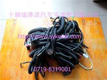 东风大力神雷洛DCI11发动机车架线束底盘线束总成3724580-KL3E3/3724580-KL3E3