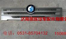 重汽成都王牌轻卡配件面板中网/LG1613JNMH757