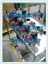 【NT855高压油泵3655996】鲲鹏齿轮泵4306945美康QSC8.3油泵
