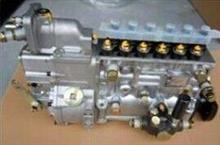 VG1560080023高压油泵带全程K型调速器/VG1560080023