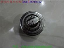 重汽豪沃轻卡配件节温器/JWQ02