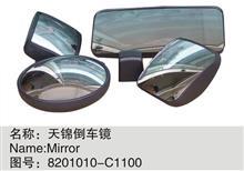 东风天锦外后视镜-左右通用 补盲镜 广角后视镜总成  侧下视镜/8201010-C1100