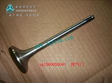 中国重汽豪沃A7,T7金王子,H7排气门/VG1560050041