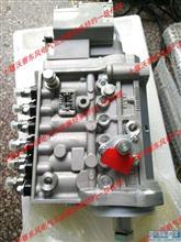 C5258154雷竞技App最新版雷竞技燃油泵 C5258154