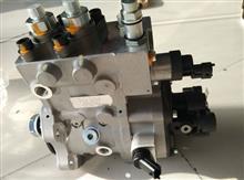雷诺高压油泵 D5010222523/D5010222523