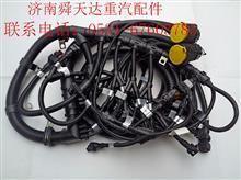 雷火电竞下载天然气发动机线束 612600191072 612600191072