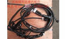 雷火电竞下载天然气发动机线束 612600191072