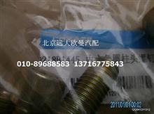 福田戴姆勒欧曼Q218HB1455内六角圆柱头螺钉/Q218HB1455