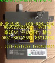重汽豪沃A7举升泵/WG9925823002