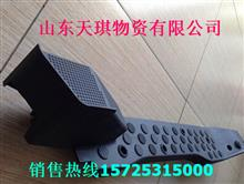 福田 欧曼GTL左地毯压条/FH4512020001A0