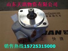 欧曼GTL转向油泵总成/1425334010002A0