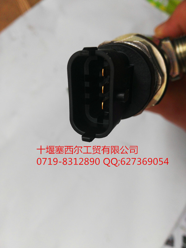 524东风天龙汽车雷诺发动机燃油高压共轨管,D5010222524价格,高清图片