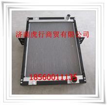 福田瑞沃散热器总成G0130020074A0/G0130020074A0