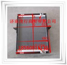 福田瑞沃散热器总成G0130020075A0/G0130020075A0