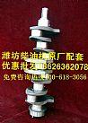 潍柴ZH4100P曲轴潍坊ZH4100ZG柴油机曲轴中冷器厂家