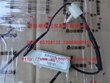 重汽豪沃(HOWO)轻卡配件温度传感器/AZZAY40044