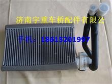 陕汽奥龙13款蒸发箱蒸发器/DZ13241841065