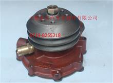 原厂供应东风轻卡天然气水泵总成/1307Q68-010-172